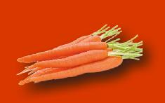 carotte.png